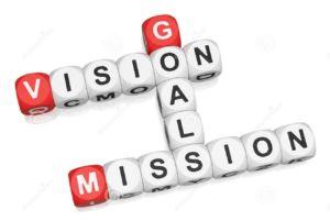 Vision Goals